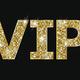 VIP Party nach Konzert
