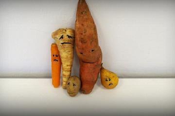 VeggieMat-2. Chance für verschmähtes Obst & Gemüse