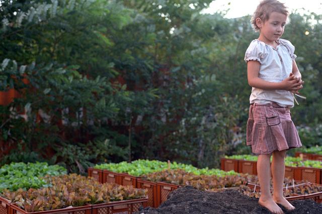 Prinzessinnengarten – let it grow!