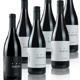 BEST OF RED: 6er Bio-Wein-Paket Weingut Thomas Hareter