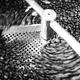Kaffee Entdecker-Kurs