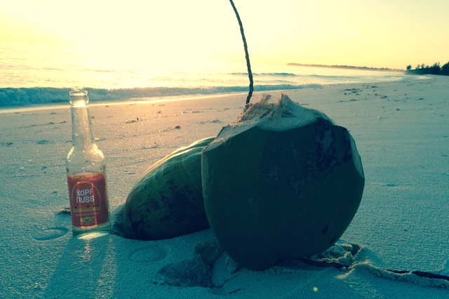 KopfNuss Bio-Kokoswasserschorle
