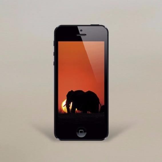 5 Smartphone Wallpaper, emotionale Naturmotive