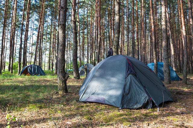 Camp Nature - Natur ohne Grenzen