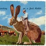 Trashige Postkarte aus dem Urlaub