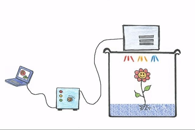 Plantabator - the plant incubator