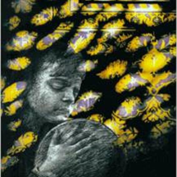 Das blinde Kind, ein Buch von Dr. Mohammed Ghodstinat
