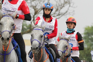 Reduction of Elimination Rates in Endurance Horses