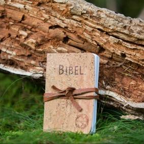 Survival Bible - Kork Edt.