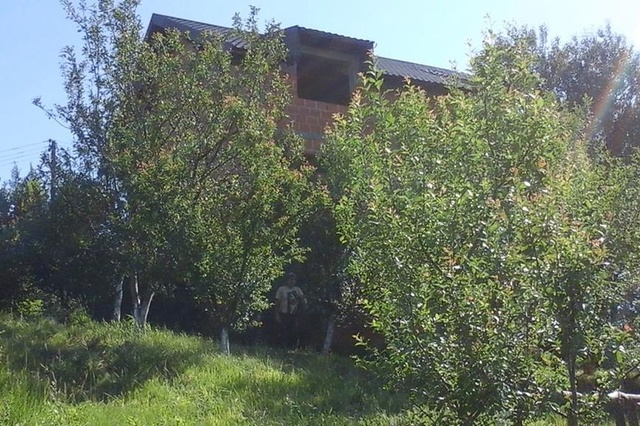 Bio-Imkerei in Bosnien