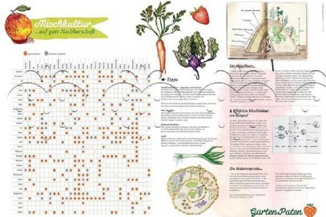 Gartenpaten - App-Entwicklung & Adventskalender