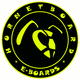 Hornetboard Sticker