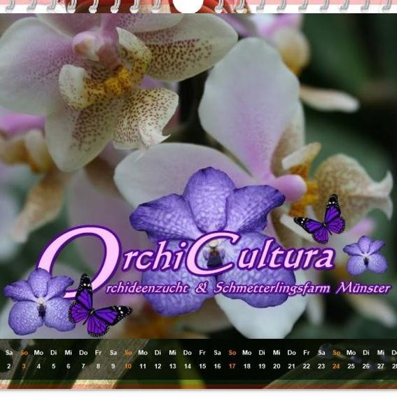 Orchideen-Kalender 2017