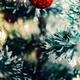Weihnachten - 4 Tage im Haus Eulenburg