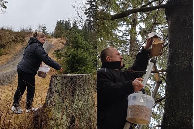 Futterunterstützung für unsere Waldvögel gesucht !