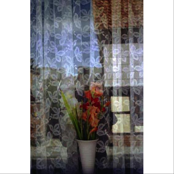 Fenster'2
