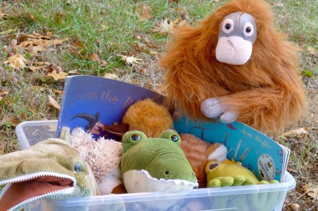 Dodo's Book Boxes