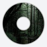 Medvetna auf DVD