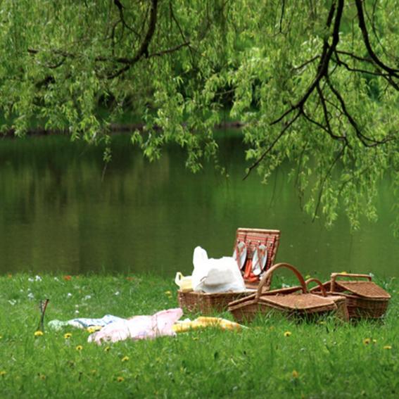 Picknick mit Kaffee und Kuchen