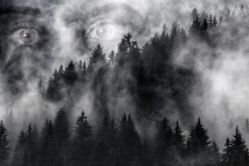 Henri Vogel | Die letzte Nacht - Weiß