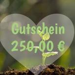 250 Euro Einkaufsgutschein