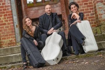 Trio Lirico: Debüt CD - Max Reger, Streichtrios