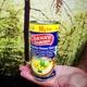 Hummus von Produkt-Platzhirsch Samer Alkadi