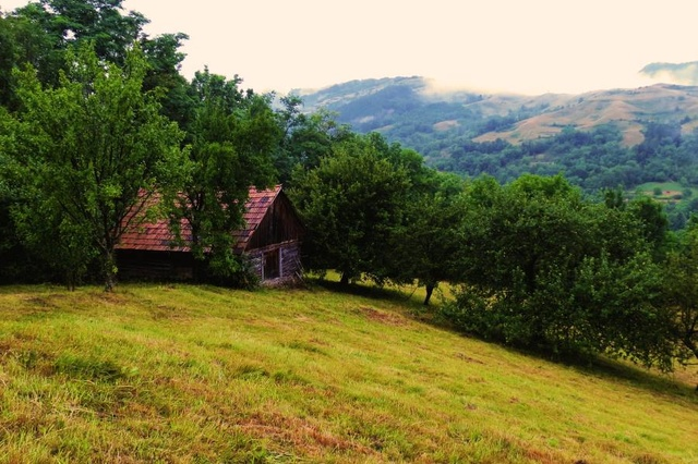 După Gard - the Eco-Retreat in Transylvania