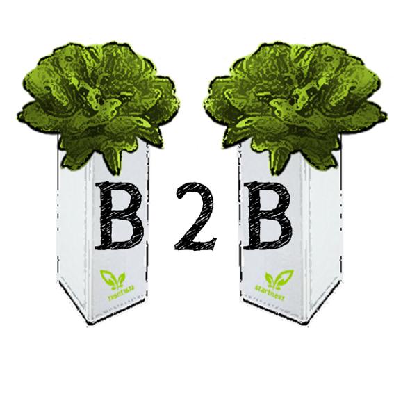 Firmen-Paket (10 x BottleCrop)