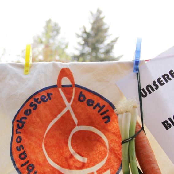 Groupie Paket Bio