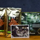 2 kg Wildkaffee + Postkarte + Poster
