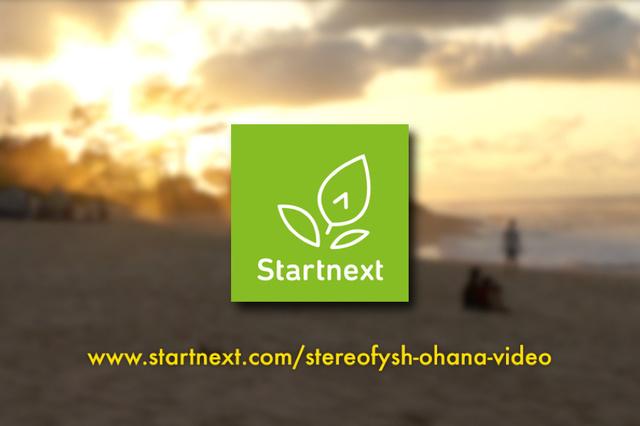 Stereofysh - Video und Vinyl Produktion