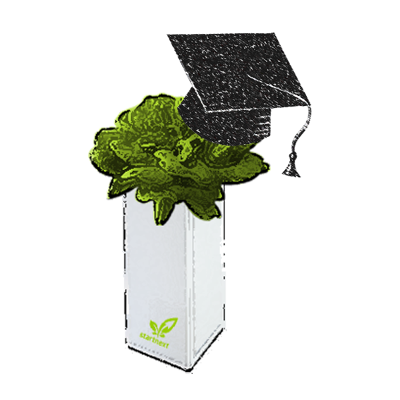 """Day course """"hydroponic gardening"""" + 1 x BottleCrop for you"""