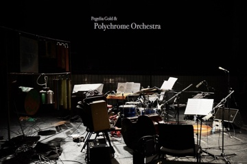 Pegelia Gold /w POLYCHROME ORCHESTRA/CD production
