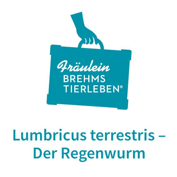 Welturaufführung von Fräulein Brehms Tierleben Lumbricus terrestris - Der Regenwurm
