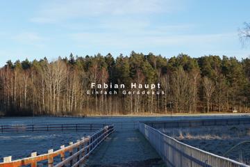 """""""Einfach Geradeaus"""" - Fabian Haupt Band EP"""