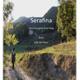 Serafina-Eine Frau geht ihren Weg - Probeheft 60Seiten