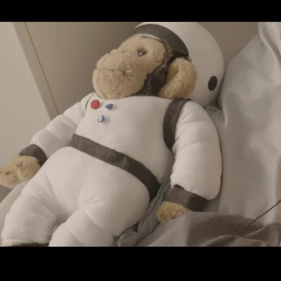 Original Requisite / Astronauten-Affe