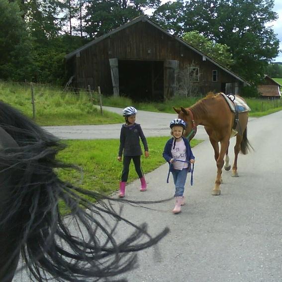 Trekking mit Ponies, 2 Personen