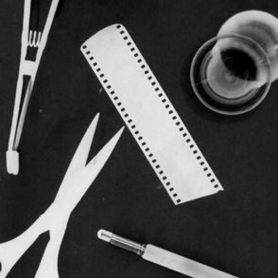 Workshop: Fotogramme