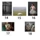 jeweils ein handsignierter Print von einem dieser 5 Fotografen