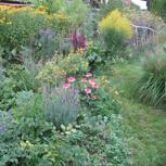 Gartenplan für Ihren Garten (2€ pro m², ab 250 m