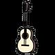Miss Allies Gitarre - Walden Concorda CG600CE
