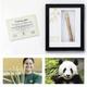 Bambus-Stück mit Biss-Spuren der Wiener Pandas