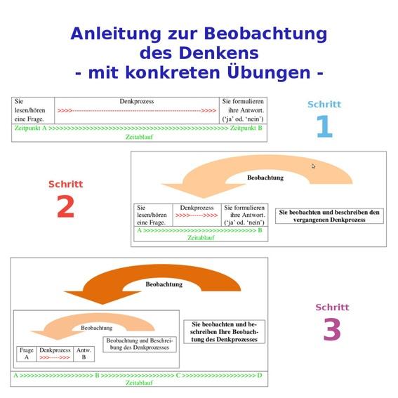 Anleitung zur Beobachtung des Denkens / Forschungsbericht
