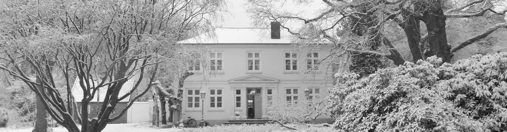 Langes Wintermarkt2016Uetersen
