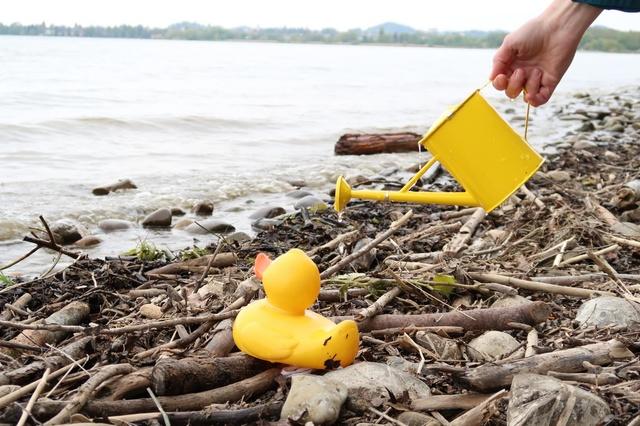 DuckTapeTicket - The Undreamt Oasis