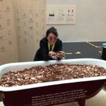 Kuratorin-Führung im Vorarlberg Museum