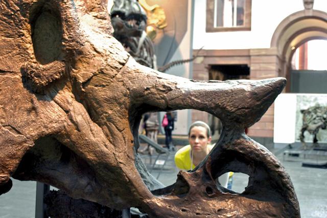Museum Hoch 3 - Integration durch Interaktion