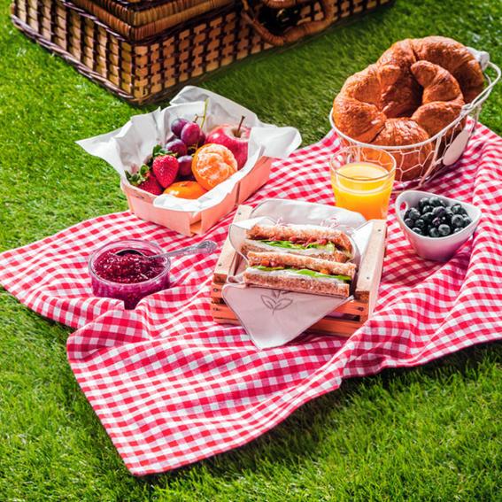 Brunch-Picknick im Garten für Zwei